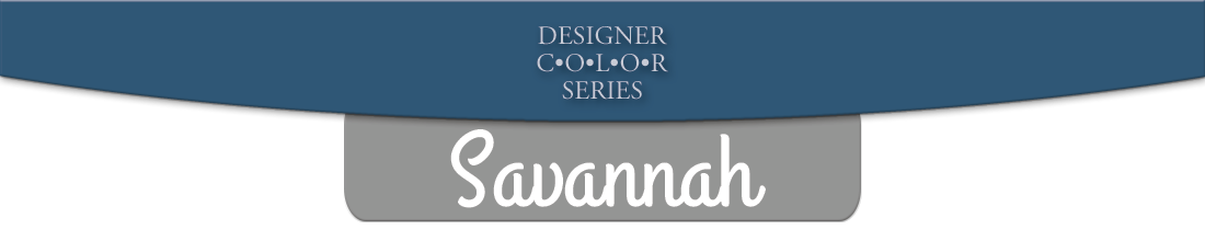 savannah boat dock series banner